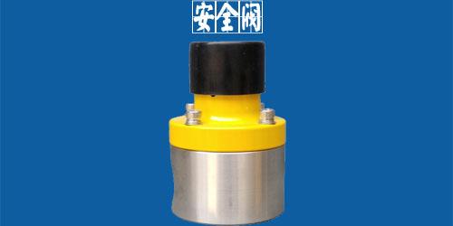 计量泵安全阀